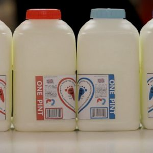 A Love Story… In Milk | Michael Csanyi Wills