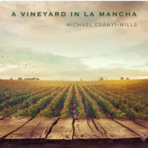 Vineyard in La Mancha | Michael Csanyi Wills